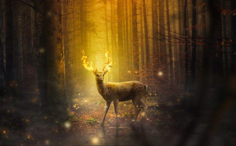 A Fire-Deer