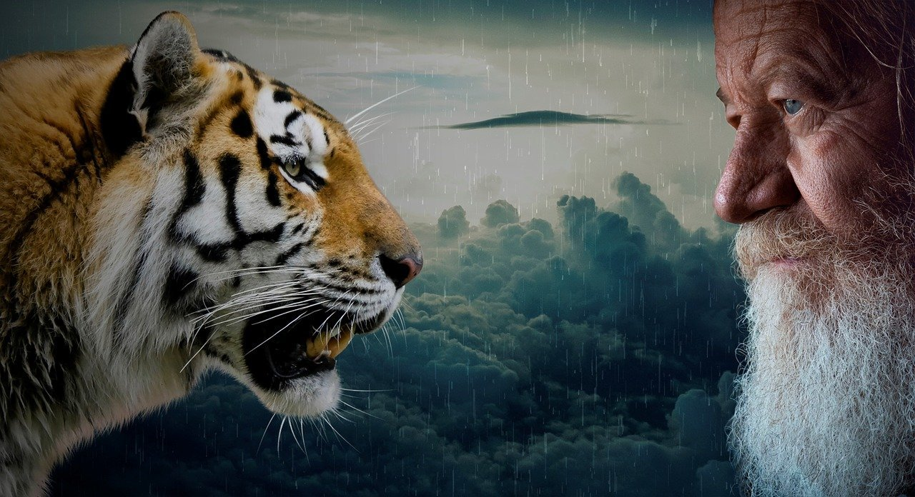 Picture of a Man and Tiger